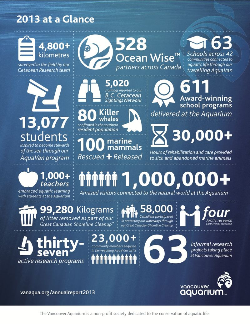 Infographic - 2013 in Summary